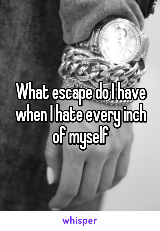 What escape do I have when I hate every inch of myself