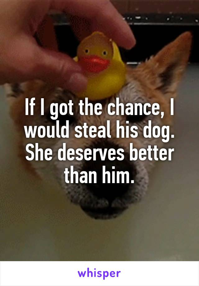 If I got the chance, I would steal his dog. She deserves better than him.