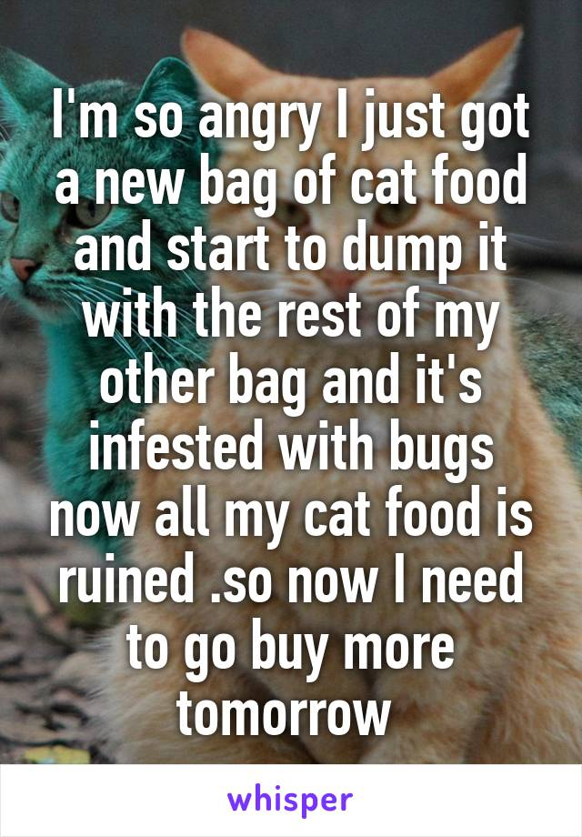 I'm so angry I just got a new bag of cat food and start to dump it with the rest of my other bag and it's infested with bugs now all my cat food is ruined .so now I need to go buy more tomorrow