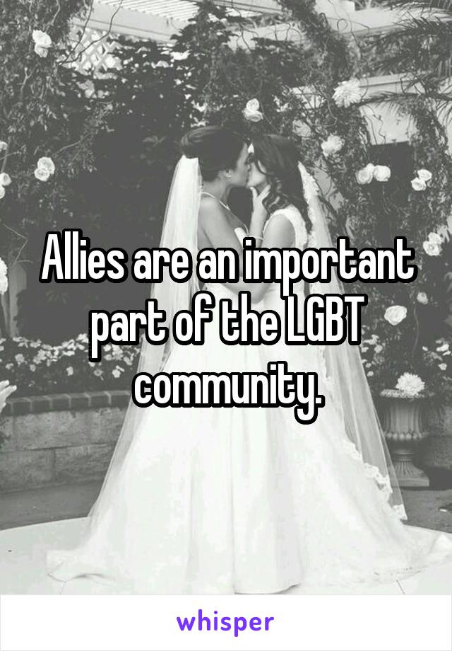 Allies are an important part of the LGBT community.