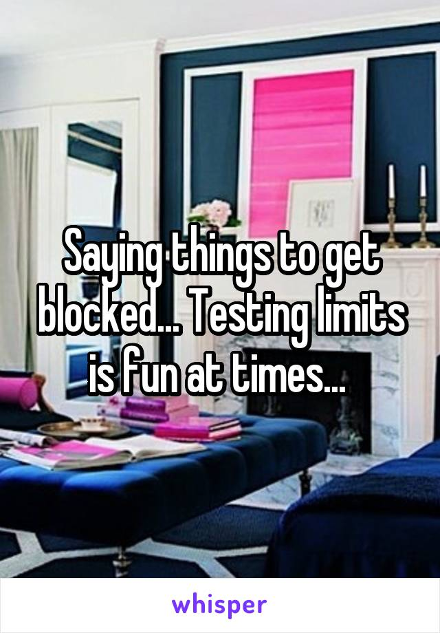 Saying things to get blocked... Testing limits is fun at times...