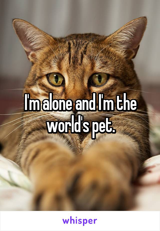 I'm alone and I'm the world's pet.