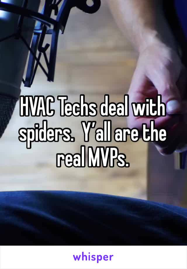 HVAC Techs deal with spiders.  Y'all are the real MVPs.