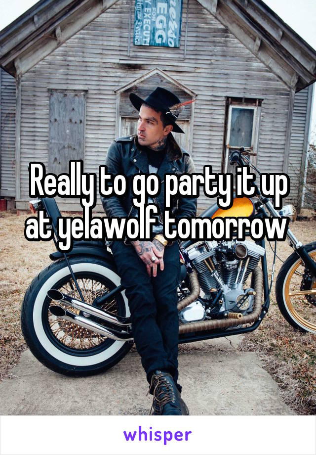 Really to go party it up at yelawolf tomorrow