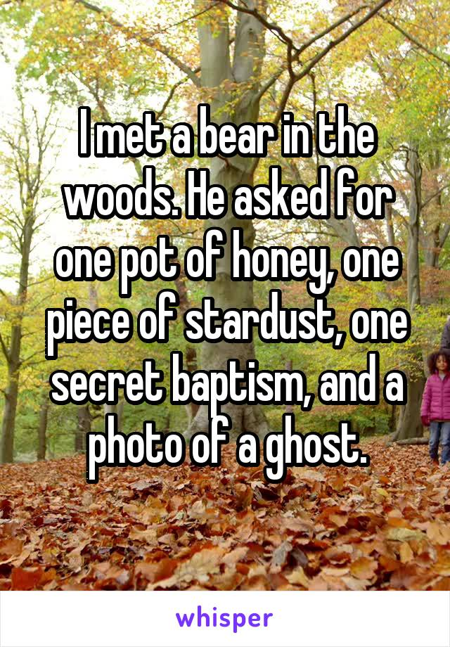 I met a bear in the woods. He asked for one pot of honey, one piece of stardust, one secret baptism, and a photo of a ghost.