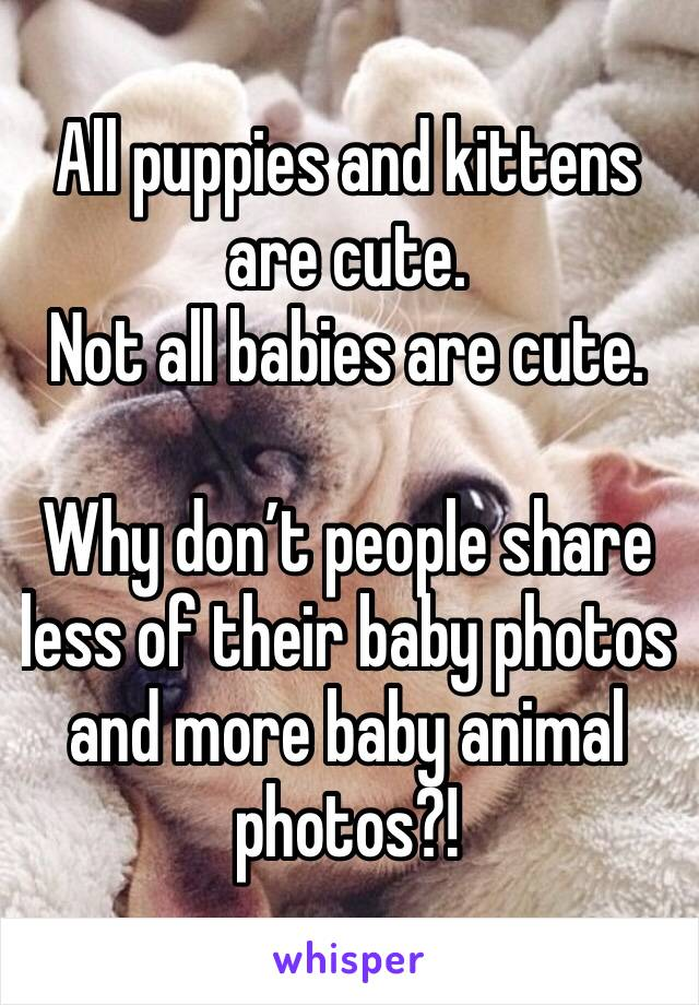 All puppies and kittens are cute.  Not all babies are cute.   Why don't people share less of their baby photos and more baby animal photos?!
