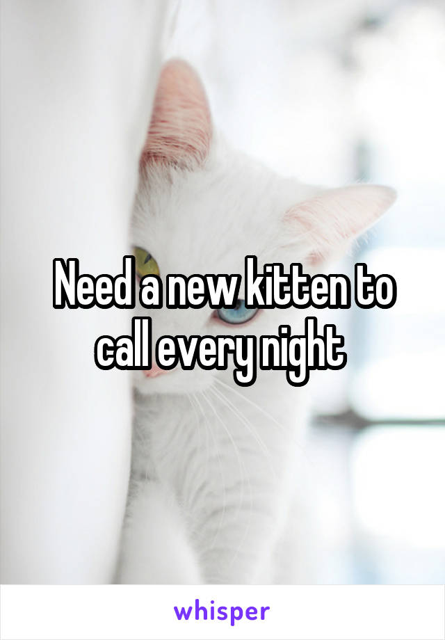 Need a new kitten to call every night