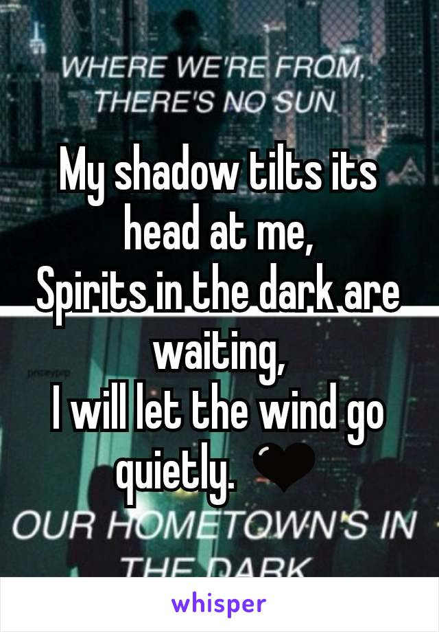 My shadow tilts its head at me, Spirits in the dark are waiting, I will let the wind go quietly. 🖤
