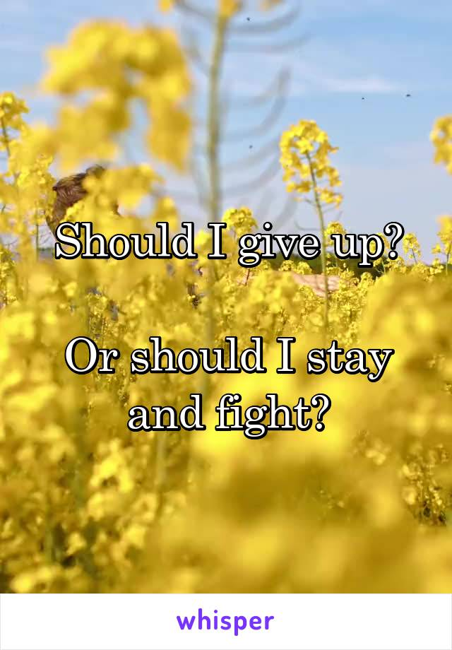Should I give up?  Or should I stay and fight?