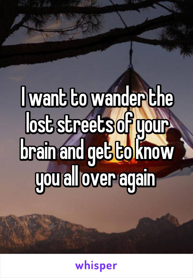 I want to wander the lost streets of your brain and get to know you all over again