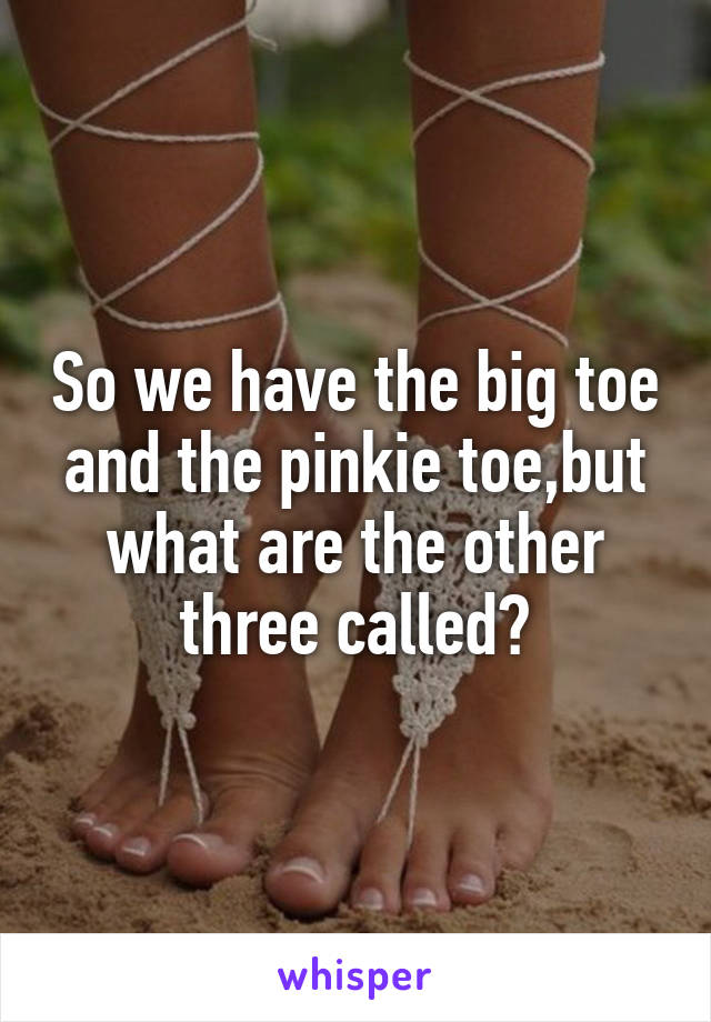 So we have the big toe and the pinkie toe,but what are the other three called?