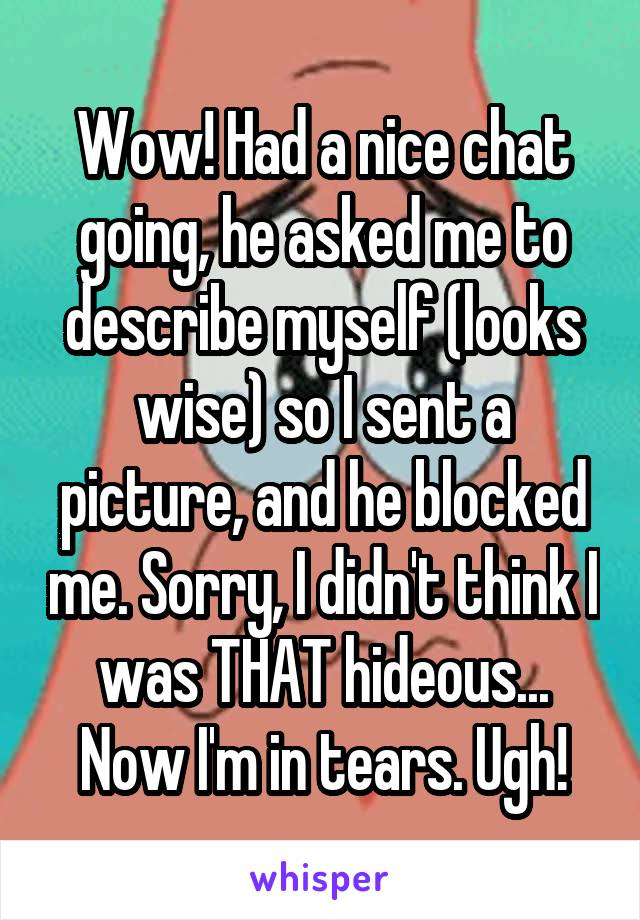Wow! Had a nice chat going, he asked me to describe myself (looks wise) so I sent a picture, and he blocked me. Sorry, I didn't think I was THAT hideous... Now I'm in tears. Ugh!