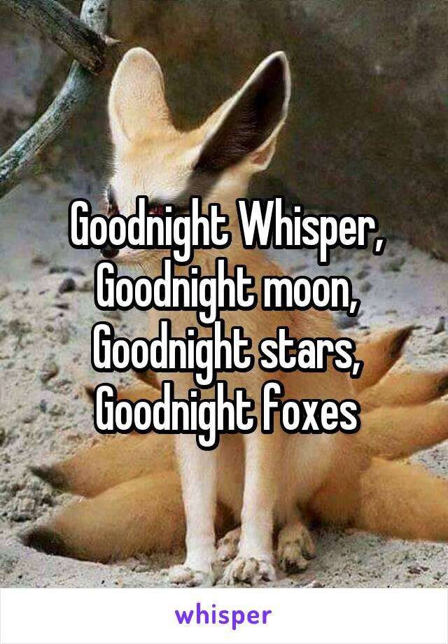 Goodnight Whisper, Goodnight moon, Goodnight stars, Goodnight foxes