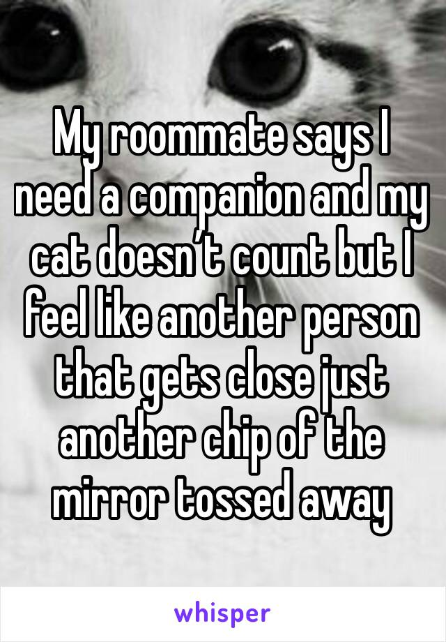 My roommate says I need a companion and my cat doesn't count but I feel like another person that gets close just another chip of the mirror tossed away