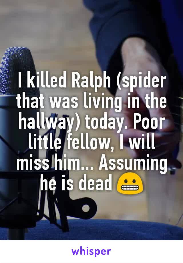 I killed Ralph (spider that was living in the hallway) today. Poor little fellow, I will miss him... Assuming he is dead 😬