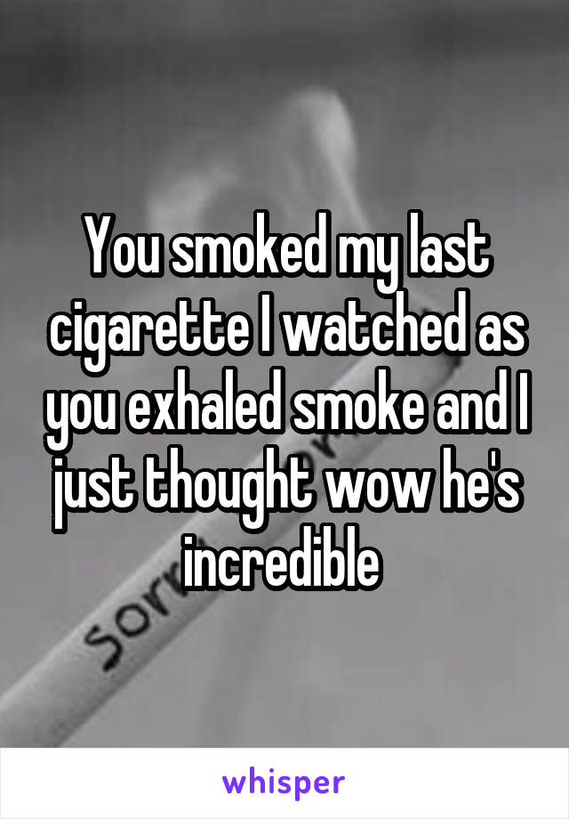 You smoked my last cigarette I watched as you exhaled smoke and I just thought wow he's incredible