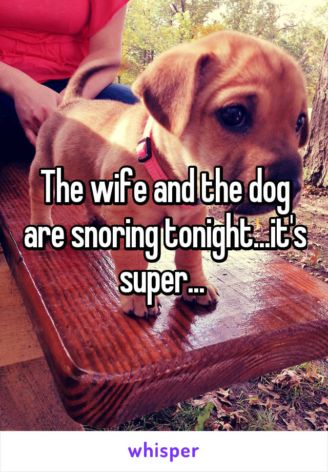 The wife and the dog are snoring tonight...it's super...
