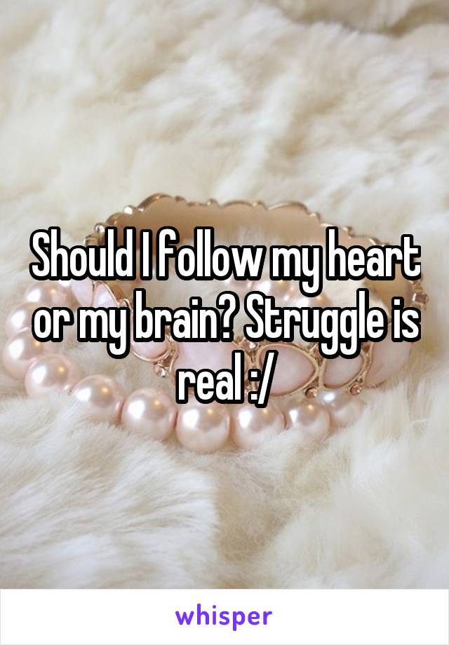 Should I follow my heart or my brain? Struggle is real :/