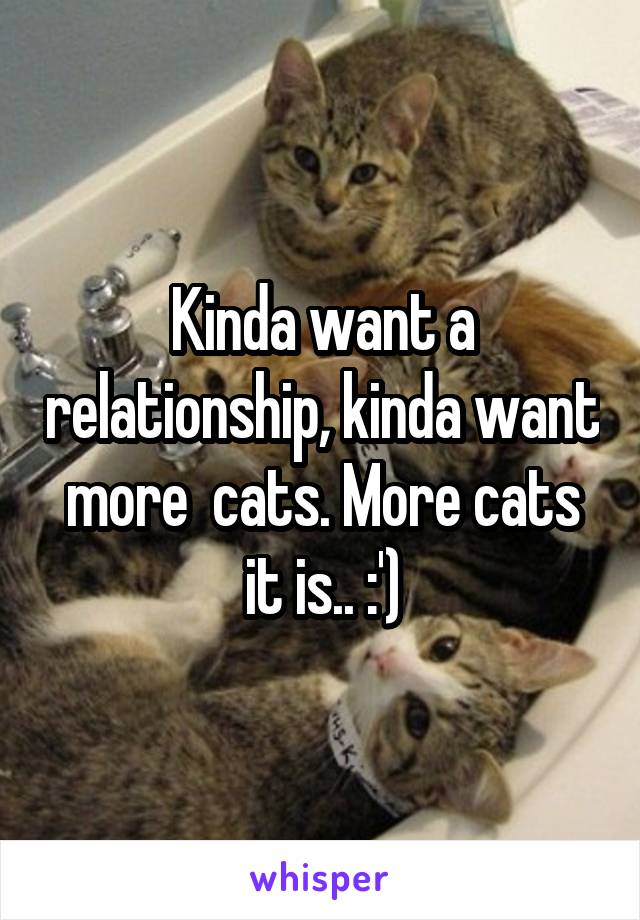 Kinda want a relationship, kinda want more  cats. More cats it is.. :')