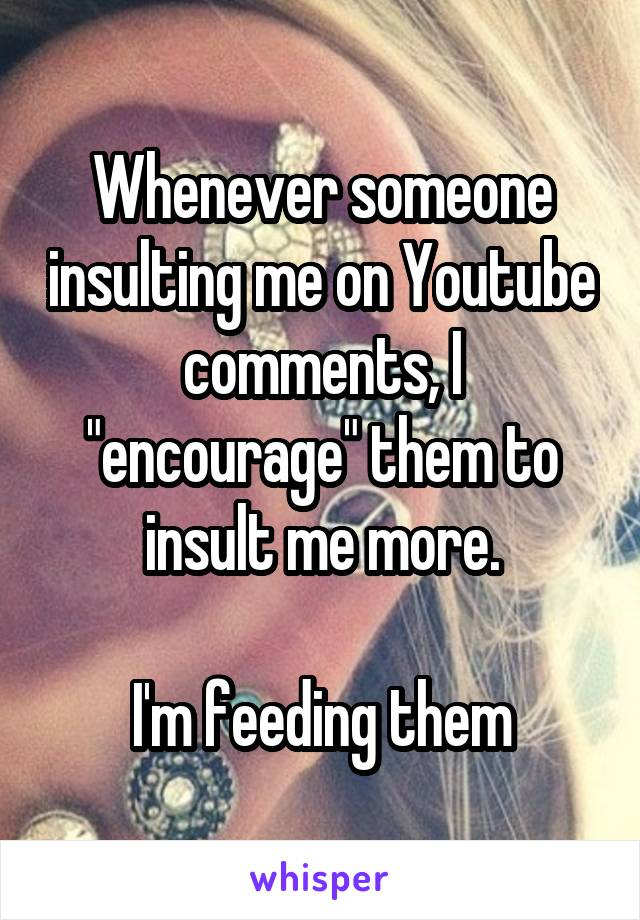"""Whenever someone insulting me on Youtube comments, I """"encourage"""" them to insult me more.  I'm feeding them"""