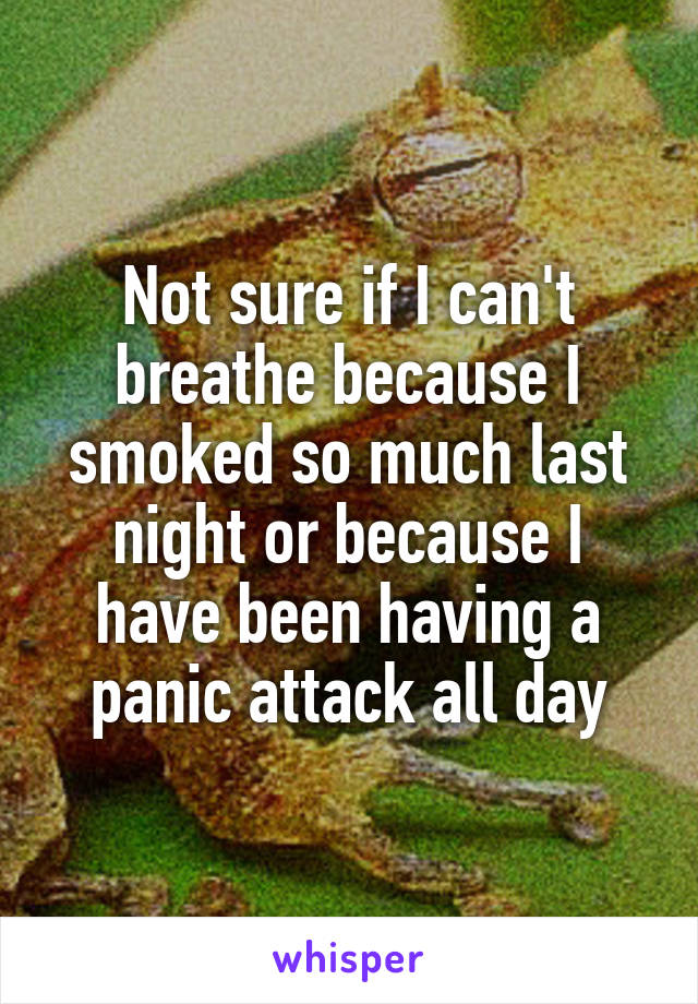 Not sure if I can't breathe because I smoked so much last night or because I have been having a panic attack all day