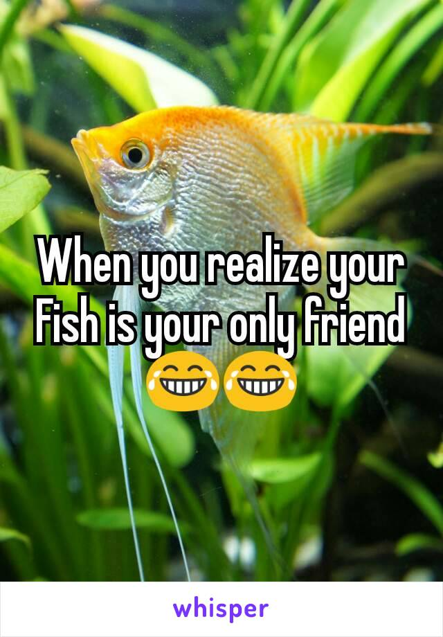 When you realize your Fish is your only friend 😂😂