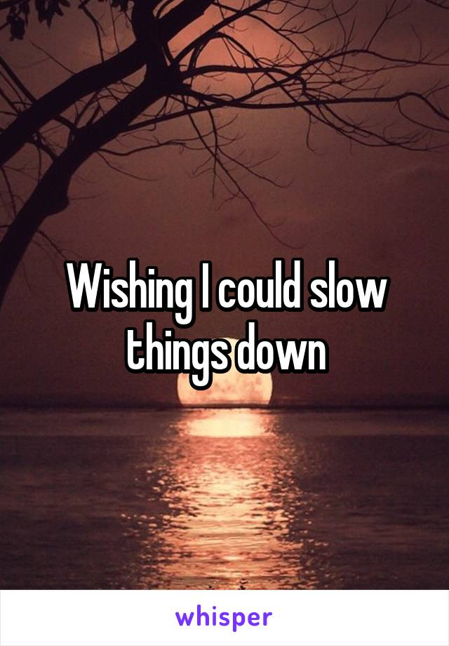 Wishing I could slow things down