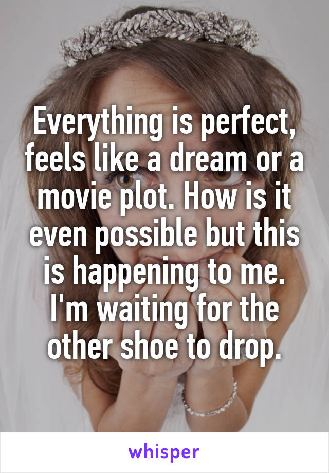 Everything is perfect, feels like a dream or a movie plot. How is it even possible but this is happening to me. I'm waiting for the other shoe to drop.