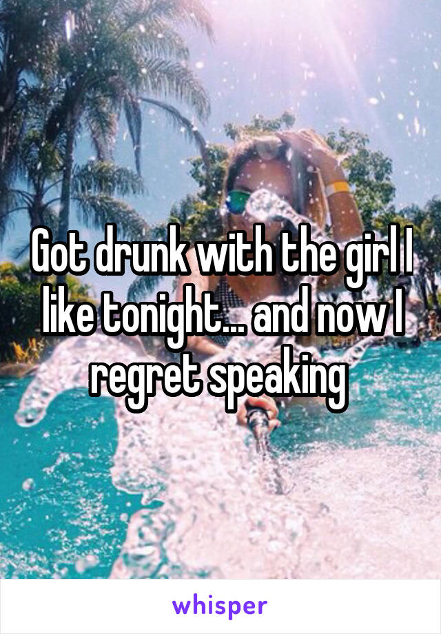 Got drunk with the girl I like tonight... and now I regret speaking