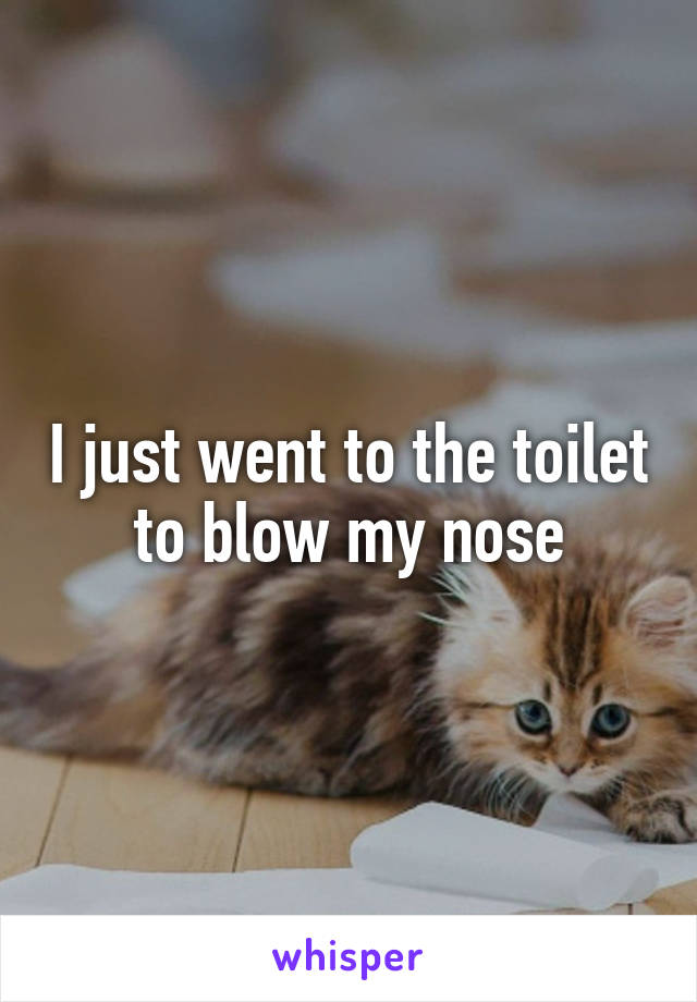 I just went to the toilet to blow my nose