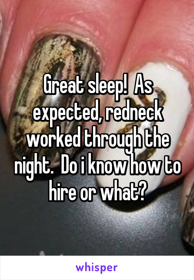 Great sleep!  As expected, redneck worked through the night.  Do i know how to hire or what?