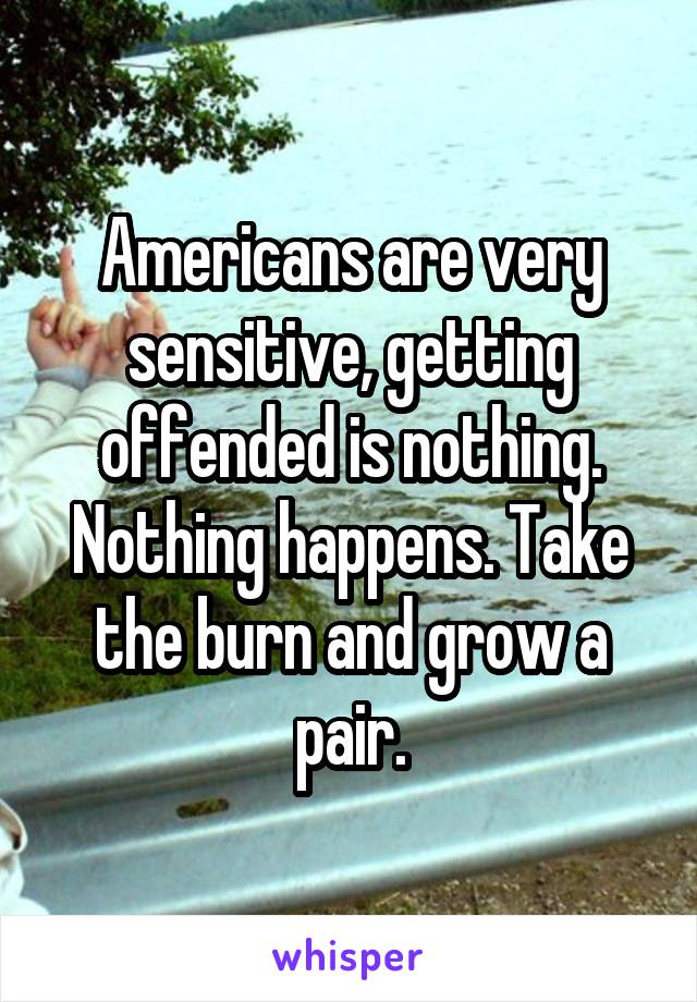 Americans are very sensitive, getting offended is nothing. Nothing happens. Take the burn and grow a pair.