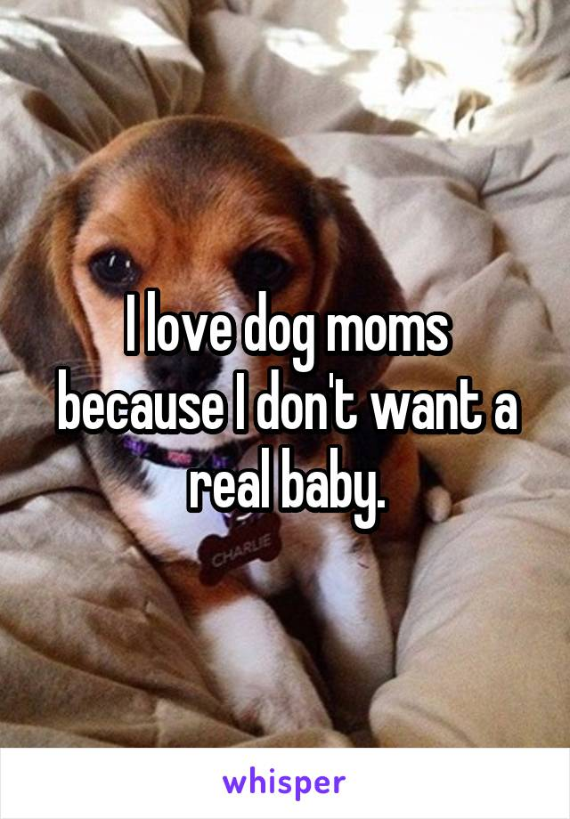 I love dog moms because I don't want a real baby.