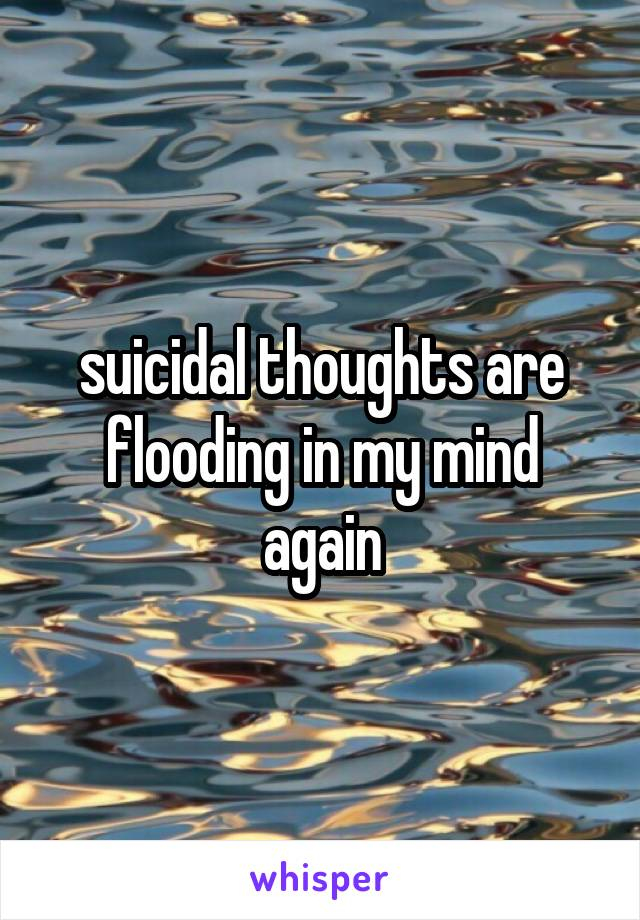 suicidal thoughts are flooding in my mind again