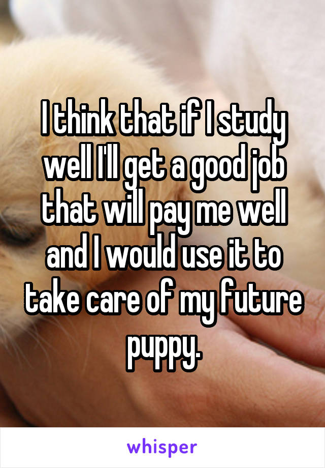 I think that if I study well I'll get a good job that will pay me well and I would use it to take care of my future puppy.