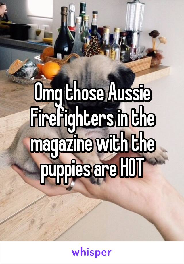 Omg those Aussie Firefighters in the magazine with the puppies are HOT