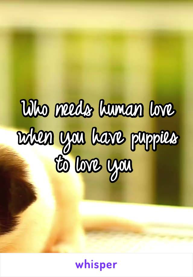 Who needs human love when you have puppies to love you