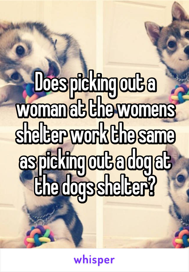 Does picking out a woman at the womens shelter work the same as picking out a dog at the dogs shelter?