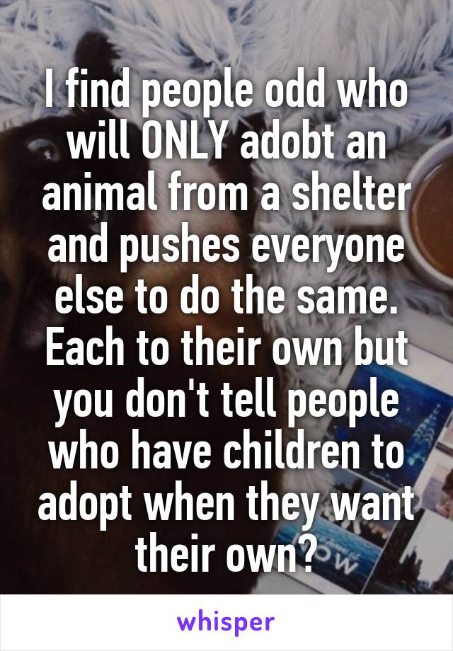 I find people odd who will ONLY adobt an animal from a shelter and pushes everyone else to do the same. Each to their own but you don't tell people who have children to adopt when they want their own?