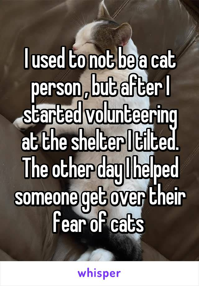 I used to not be a cat person , but after I started volunteering at the shelter I tilted. The other day I helped someone get over their fear of cats