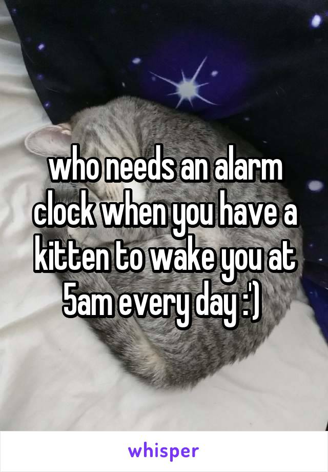 who needs an alarm clock when you have a kitten to wake you at 5am every day :')