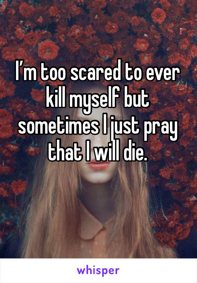 I'm too scared to ever kill myself but sometimes I just pray that I will die.