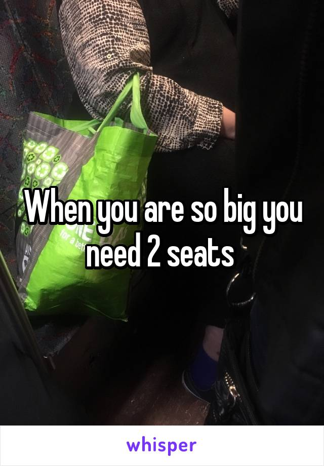 When you are so big you need 2 seats