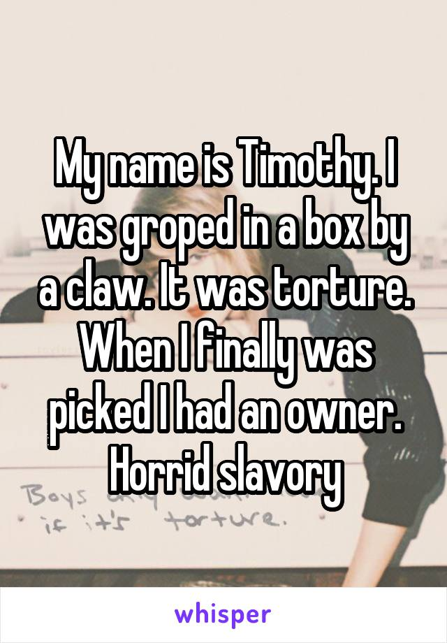 My name is Timothy. I was groped in a box by a claw. It was torture. When I finally was picked I had an owner. Horrid slavory