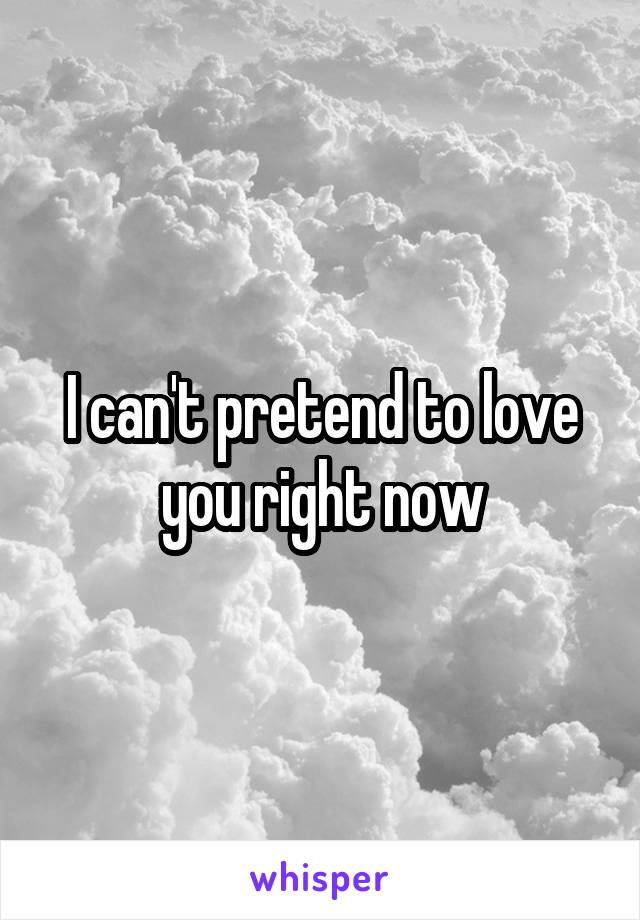 I can't pretend to love you right now