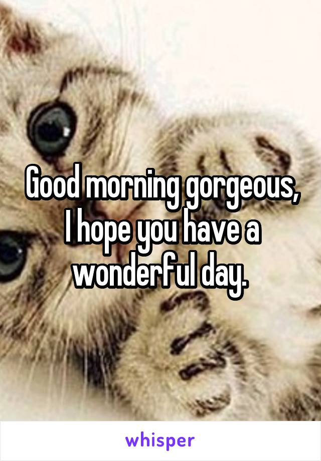 Good morning gorgeous, I hope you have a wonderful day.