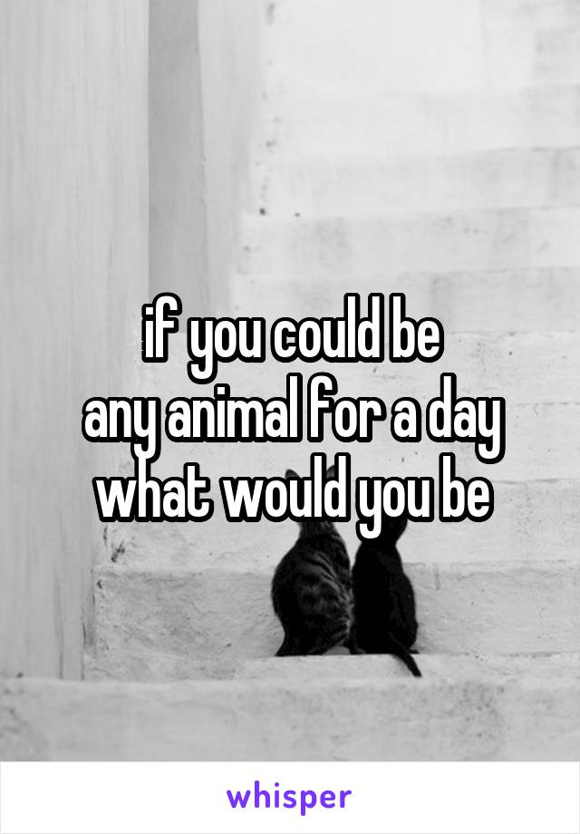if you could be any animal for a day what would you be