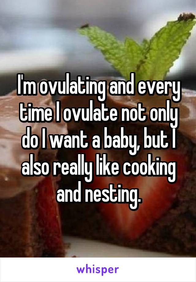 I'm ovulating and every time I ovulate not only do I want a baby, but I also really like cooking and nesting.