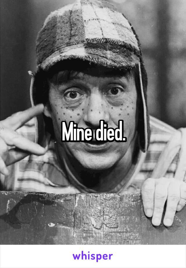 Mine died.