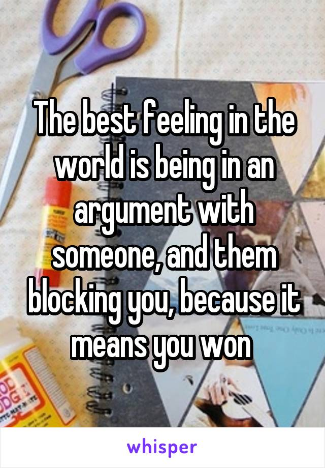 The best feeling in the world is being in an argument with someone, and them blocking you, because it means you won